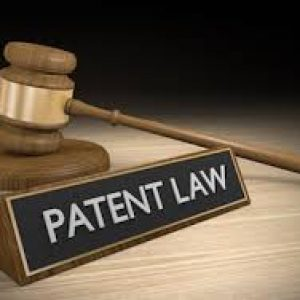 Patent Litigation